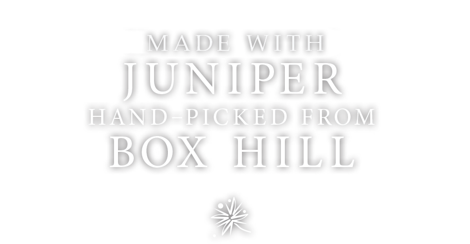 English grown Juniper berries from box hill